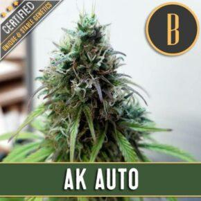 AK Auto